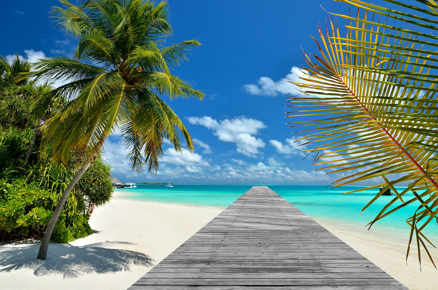 POD Travels - Hawaii