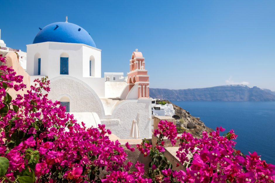 Scenic view of traditional cycladic houses with flowers in foreground, Oia village, Santorini, Greece